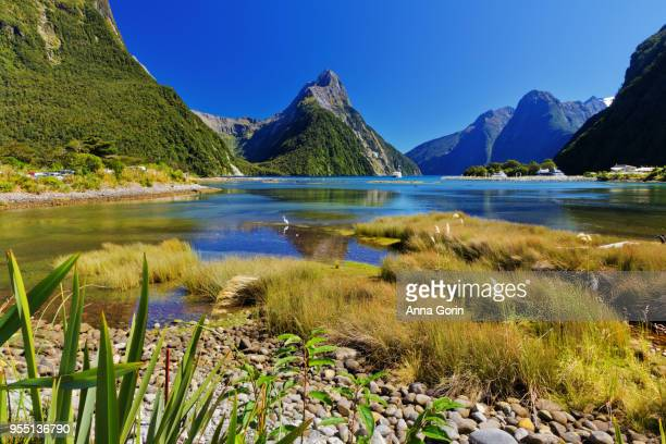 sunny autumn afternoon at milford sound looking out on mitre peak, south island new zealand - southland new zealand stock pictures, royalty-free photos & images