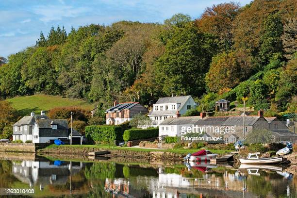 Sunny autumn day by the river at lerryn in cornwall, england.