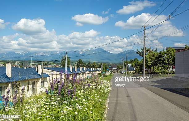 sunny blue sky, lane and road at kamifurano - vsojoy stockfoto's en -beelden