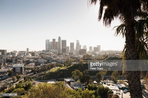 sunny cityscape, los angeles, california, usa - city of los angeles stock pictures, royalty-free photos & images