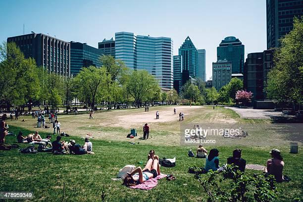 Sunny day at university park