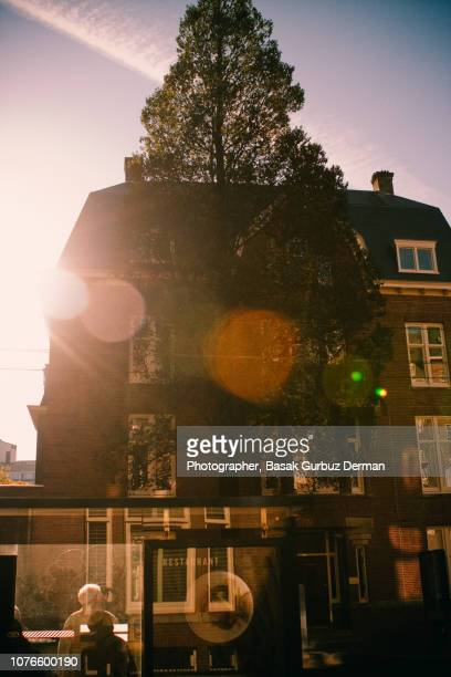 a sunny day in amsterdam in autumn - basak gurbuz derman stock photos and pictures