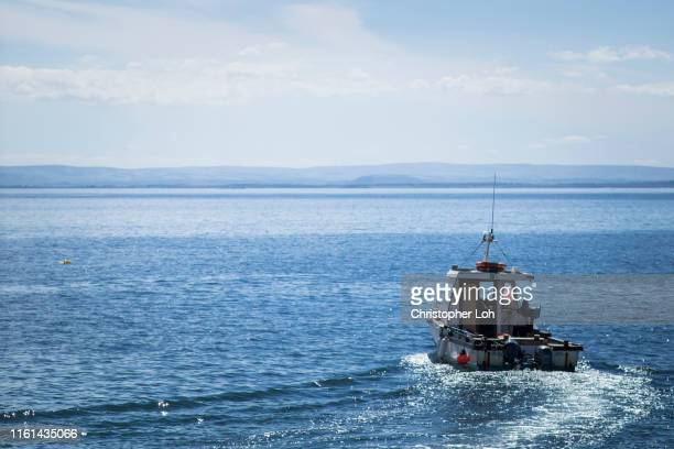 a sunny day in annstruther - fishing boat stock pictures, royalty-free photos & images