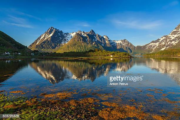 sunny day in the fjord in lofoten - anton petrus stock pictures, royalty-free photos & images