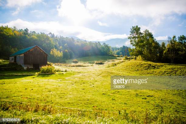 sunny day in the nature - new england usa stock pictures, royalty-free photos & images