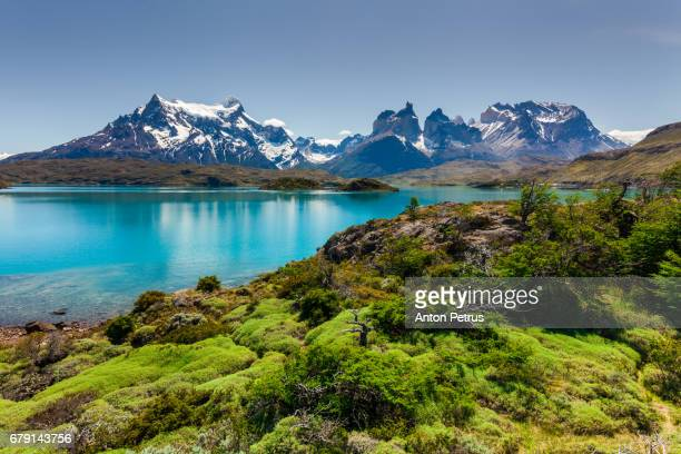 Sunny day in Torres del Paine, Chile