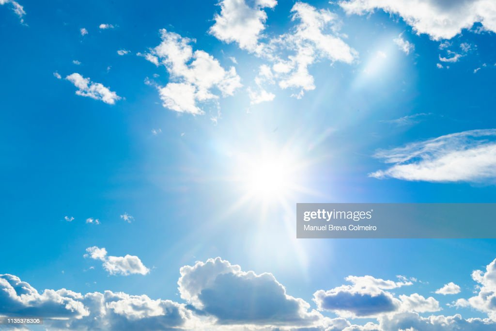 Sunny day : Stock Photo