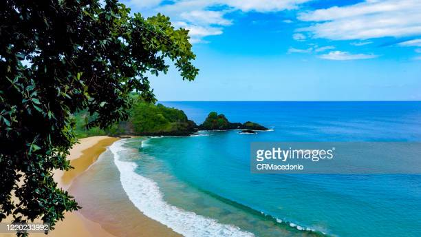sunny day, warm water, delicious sand. all the best. this is sancho beach in fernando de noronha, pe, brazil. - crmacedonio stock pictures, royalty-free photos & images