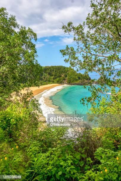 sunny day, warm water, delicious sand. all the best. this is sancho beach in fernando de noronha, pe, brazil. - crmacedonio stock-fotos und bilder