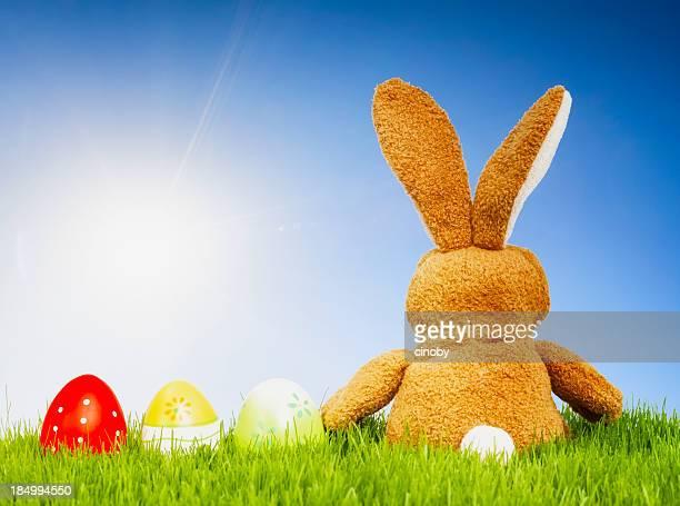 Sunny Easter Bunny