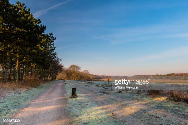 sunny frosty morning - william mevissen stock-fotos und bilder