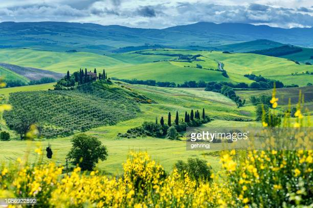 sunny landscape from val d'orcia, tuscany, italy - val d'orcia foto e immagini stock