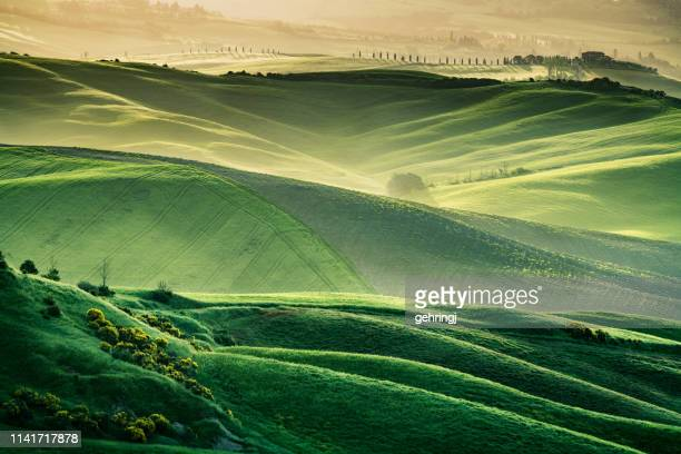 sunny landscape from val d'orcia, tuscany, italy - collina foto e immagini stock