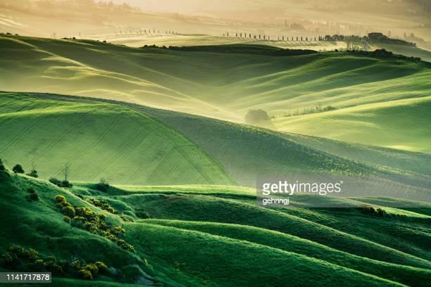 sunny landscape from val d'orcia, tuscany, italy - paesaggio collinare foto e immagini stock