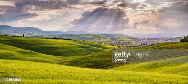 sunny landscape from val d'orcia, tuscany, italy - rolling landscape stock pictures, royalty-free photos & images