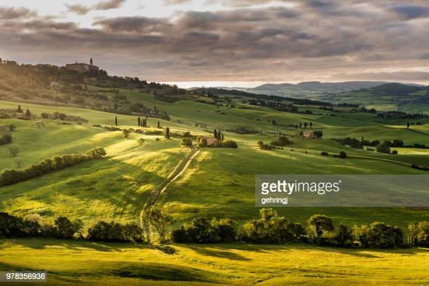 sunny landscape from val d'orcia, tuscany, italy - val d'orcia stock pictures, royalty-free photos & images