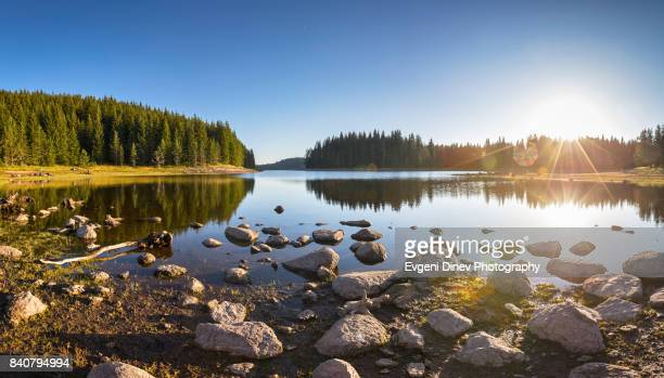 shiroka polyana lake, rhodope, bulgaria - august 2017: sunny landscape of a mountain lake - küste stock-fotos und bilder