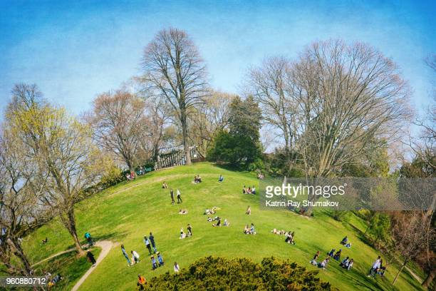 sunny may in high park on toy-ronto planet - fish eye lens stock pictures, royalty-free photos & images