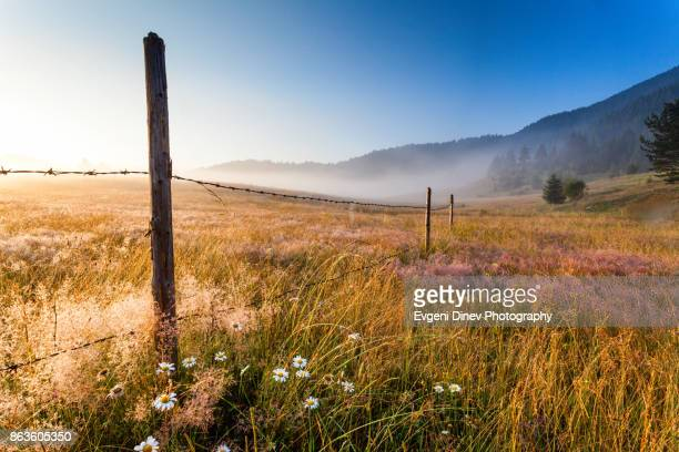 Rhodope Mountains, Bulgaria - July 2010: Sunny meadow around Yagodina village