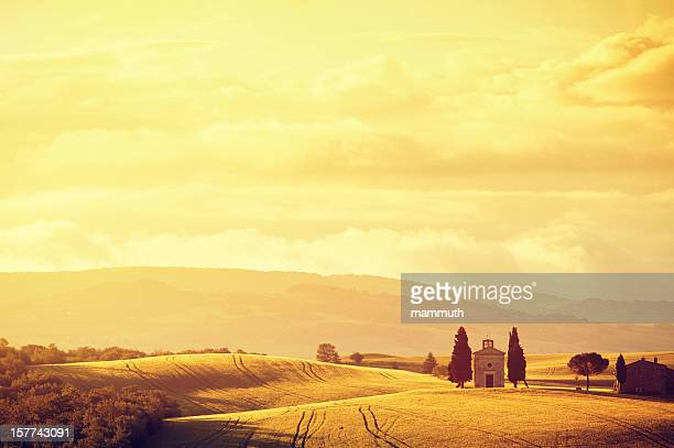 sunny morning in tuscany - italian cypress stock pictures, royalty-free photos & images