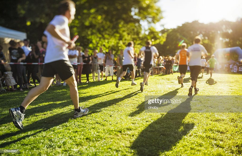 Sunny Race : Stock Photo