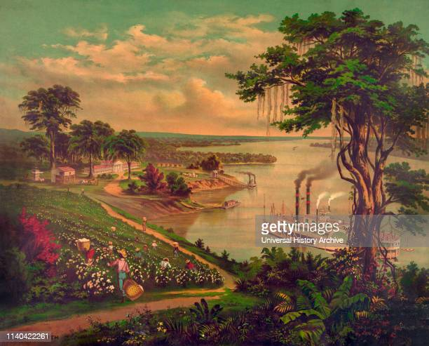 Sunny South' African Americans Picking Cotton Riverboat on River Plantation House in Background Lower Mississippi River Lithograph 1883