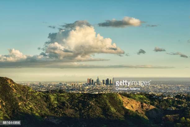 sunny view onto los angeles - hollywood hills stock pictures, royalty-free photos & images