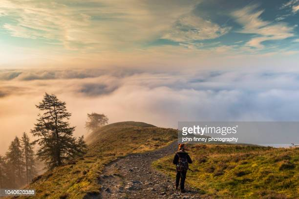 sunrise above a sea of fog on latrigg fell with a lone woman walker. lake district national park. uk. - whitehaven cumbria stock pictures, royalty-free photos & images