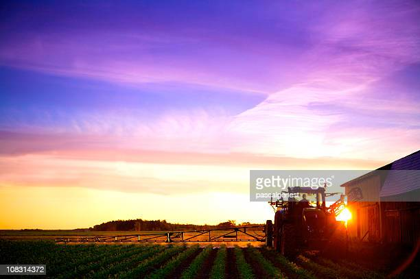 sunrise agriculture truck spraying field - back lit stock pictures, royalty-free photos & images