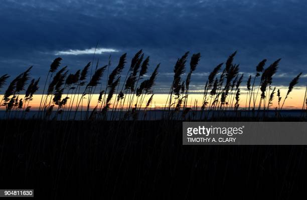 Sunrise along the beach as the sun comes up at Tod's Point Beach in Old Greenwich Connecticut on January 14 2018 / AFP PHOTO / TIMOTHY A CLARY