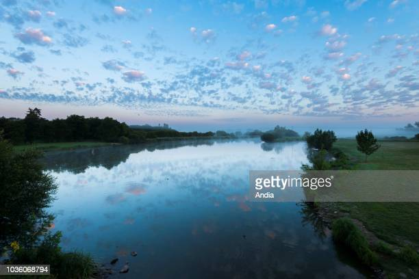 Sunrise and mist over the Goulaine marsh Vineyards in the winegrowing region of Nantes