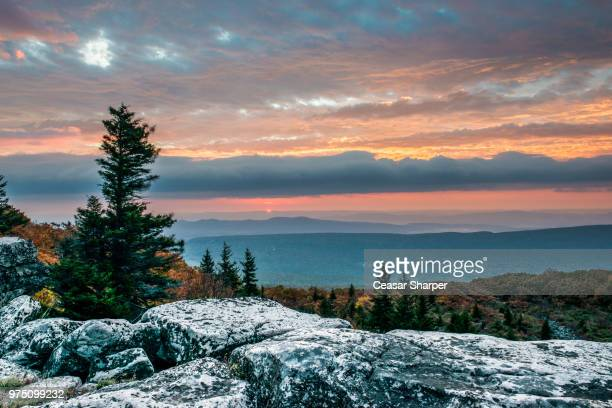 sunrise at bear rocks, wv - monongahela national forest stock photos and pictures