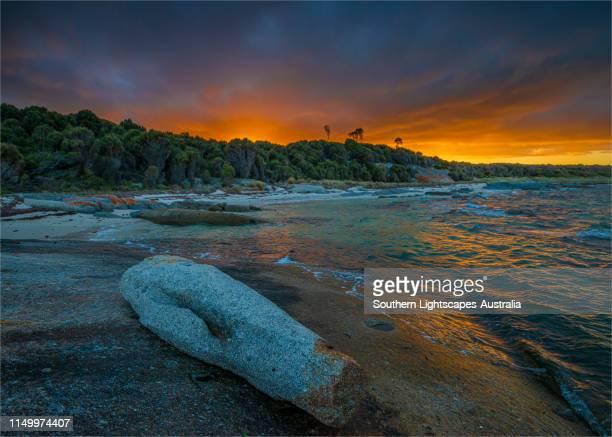 sunrise at blue rocks on flinders island, bass strait, tasmania. - bass strait stock pictures, royalty-free photos & images