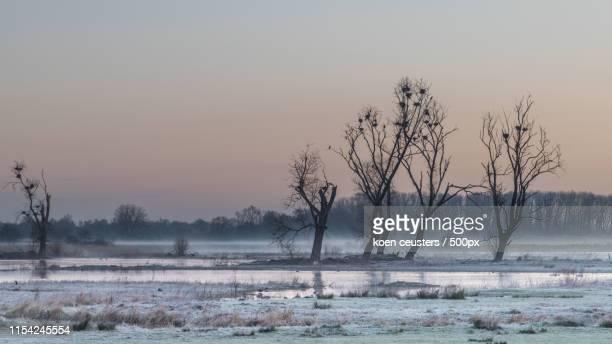 sunrise at bourgoyen - flandres oriental imagens e fotografias de stock