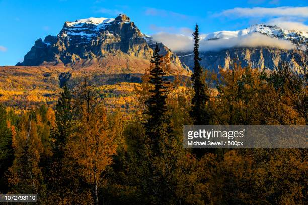 sunrise at castle mountain - castle mountain stock photos and pictures