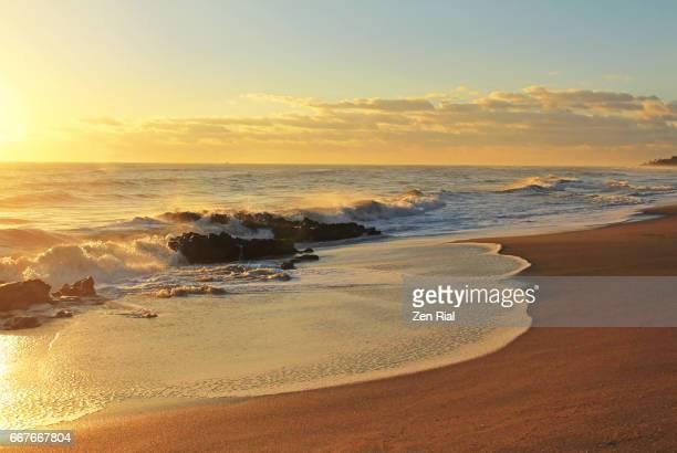 sunrise at coral cove beach, palm beach county in florida, usa - palm beach county stockfoto's en -beelden