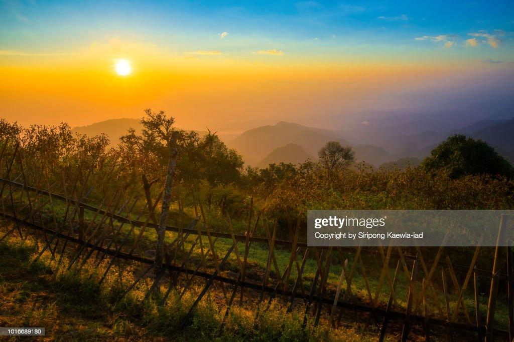 Sunrise at Doi Ang Khang, Chiang Mai, Thailand. : Stock Photo