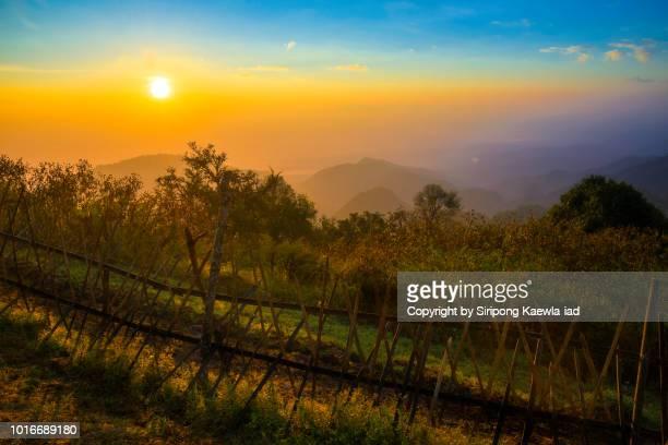 sunrise at doi ang khang, chiang mai, thailand. - copyright by siripong kaewla iad stock photos and pictures