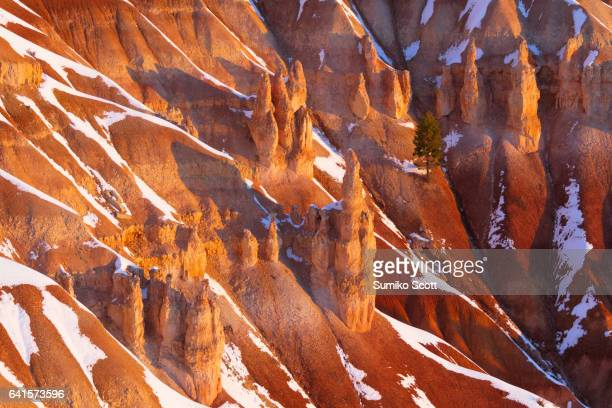 Sunrise at Inspiration Point in Winter, Bryce Canyon National Park, UT