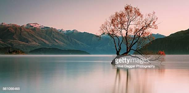 sunrise at lake wanaka - wanaka - fotografias e filmes do acervo