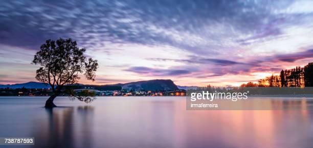 Sunrise at Lake Wanaka, Queenstown, South Island, New Zealand