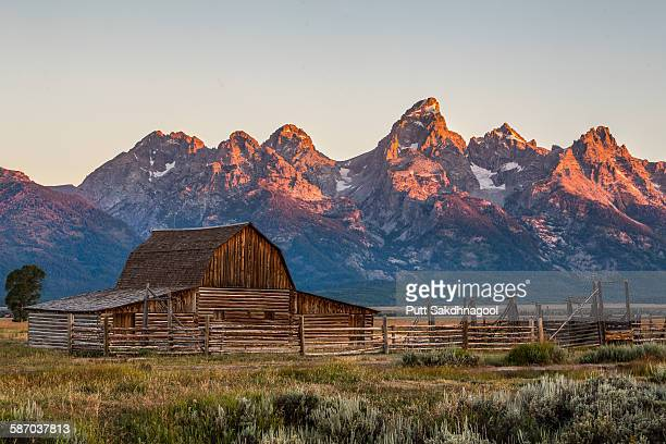 Sunrise at Mormon Row, Grand Teton