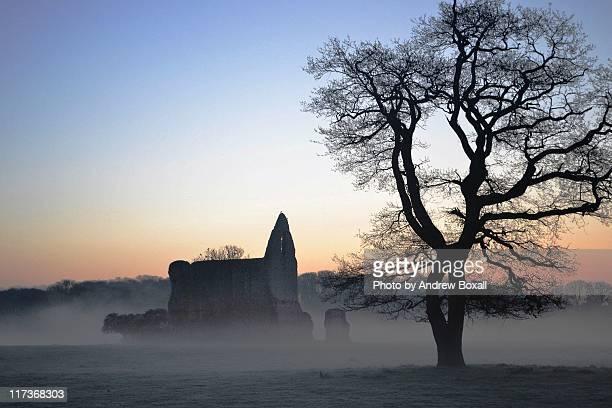 sunrise at newark priory - surrey england bildbanksfoton och bilder