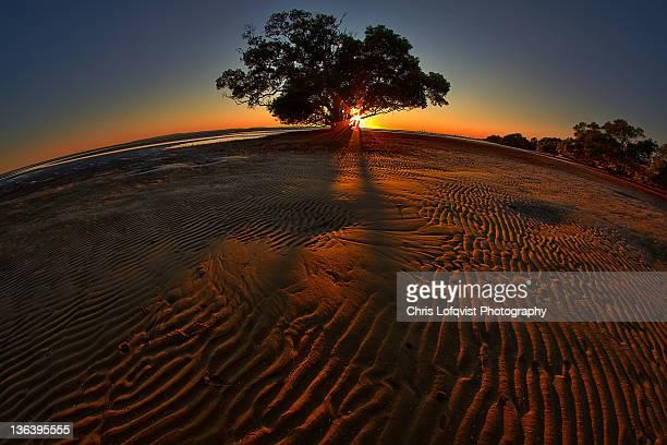 Sunrise at Nudgee beach