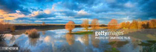 sunrise at overflowed river pinios  panorana - dimitrios tilis stock pictures, royalty-free photos & images