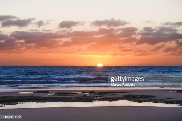 sunrise at patagonian shore - radicella foto e immagini stock