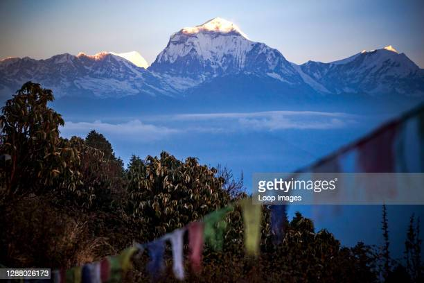 Sunrise at Poon Hill and the sun hitting the snow caps of Dhaulagiri.