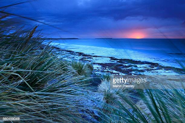 Sunrise at Sealion Island, Falkland Islands