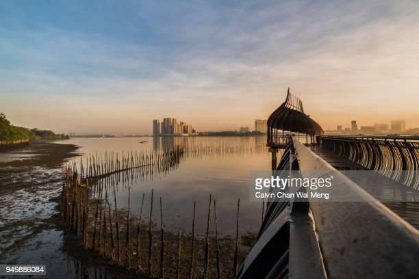 sunrise at sungei buloh wetland reserve - feuchtgebiet stock-fotos und bilder