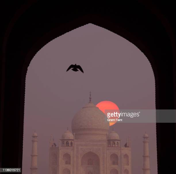 sunrise at taj mahal. - place of worship stock pictures, royalty-free photos & images